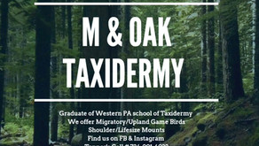 M & Oak Taxidermy - Relive the Hunt