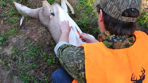 How To Field Dress Wild Game Properly