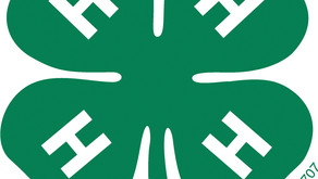 Are you interested in joining 4-H?