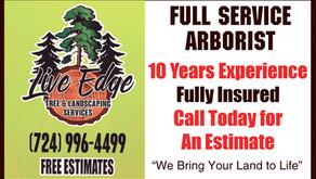 Live Edge: Full Service Arborist