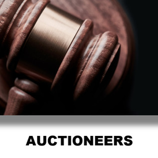 Auctioneers Icon.jpg