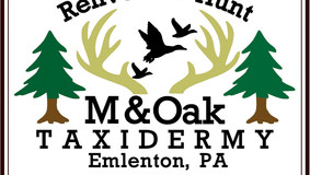 M & Oak Taxidermy