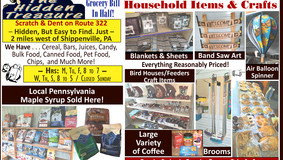 The Hidden Treasure - Scratch & Dent - Now with Household & Craft Items