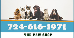The Paw Shop - Cat and Dog Grooming