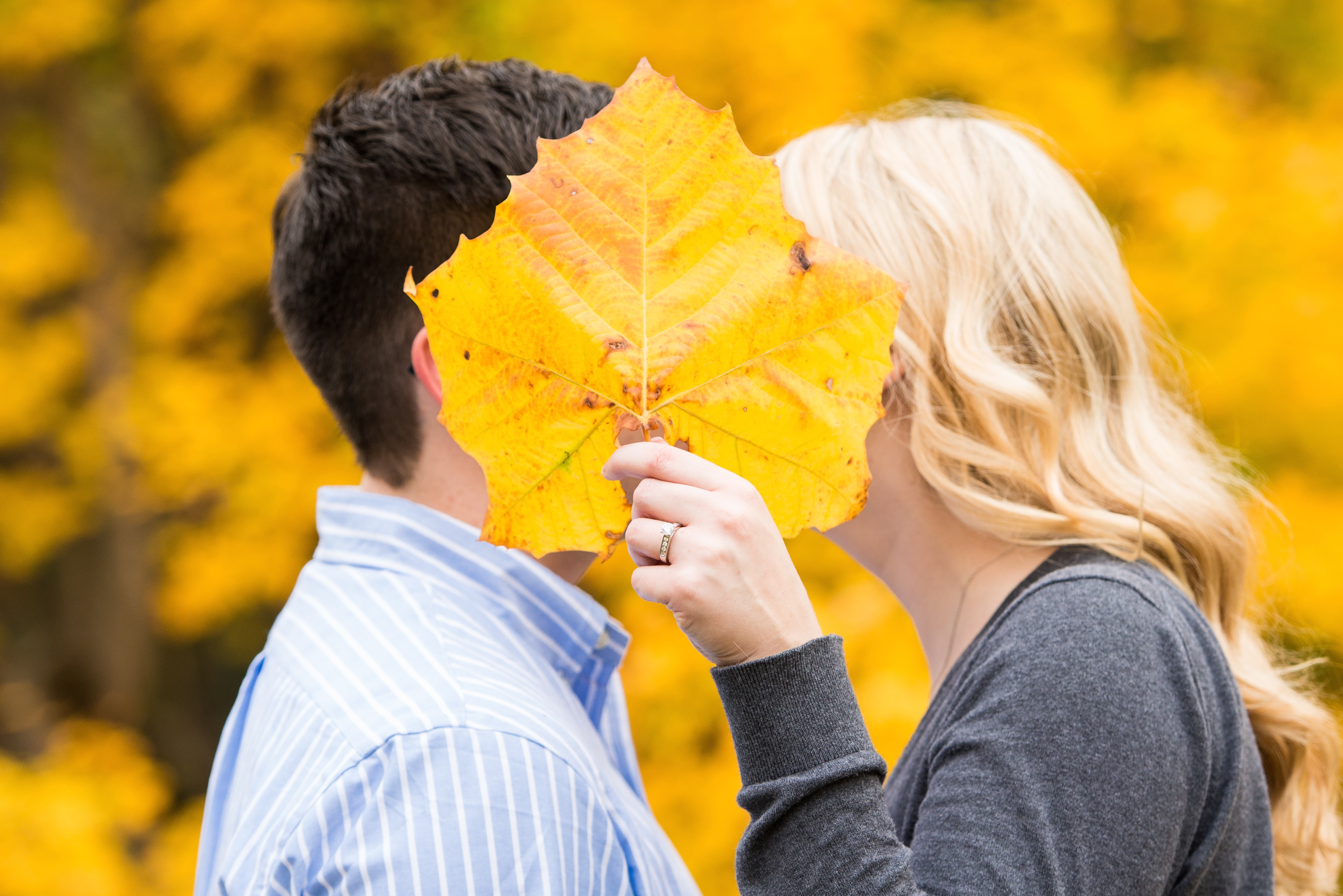 Fall Engagement Photo Holiday Park