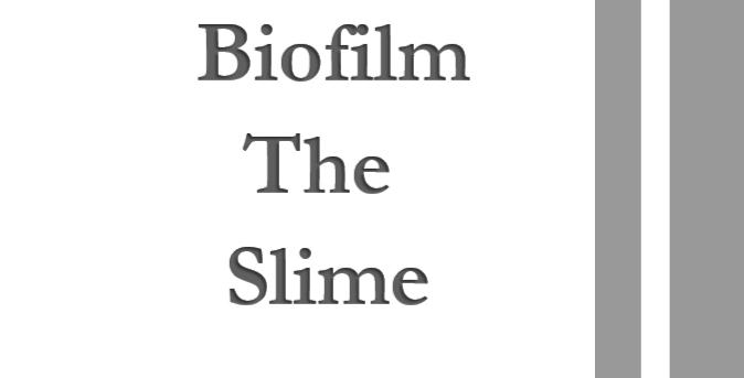 Biofilm, The Slime  2 Units