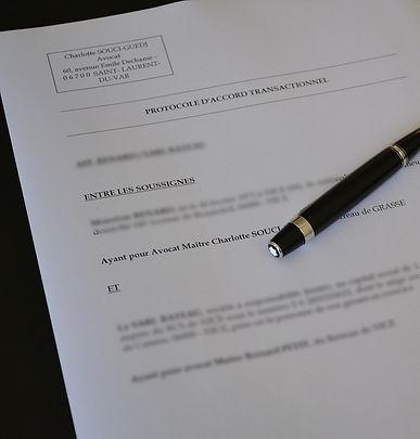 Protocole d'accord, rédaction de statuts et contrats