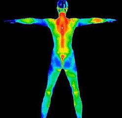 full body thermogaphy