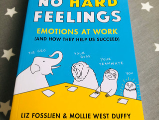 No Hard Feelings - Emotions at Work - my recommended read