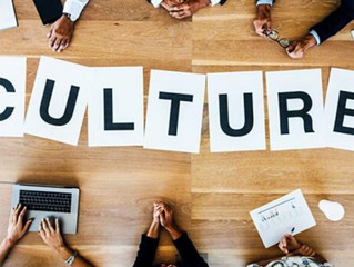 Developing your Culture - Culture Tip 5