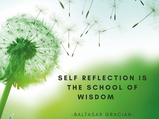 Self reflection is the school of wisdom
