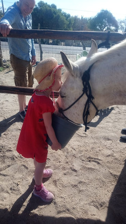 A young horse lover