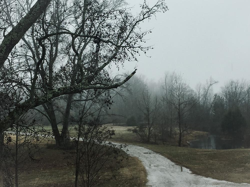 Story Tree Farm