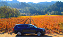 Vehicle with vineyard in autumn