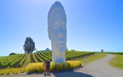 Art & Wine Tours