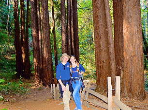 Sonoma Hike & Beer Tour-Couple in Redwoo