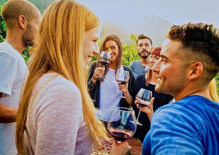 Group tasting in vineyard.stock - Versio