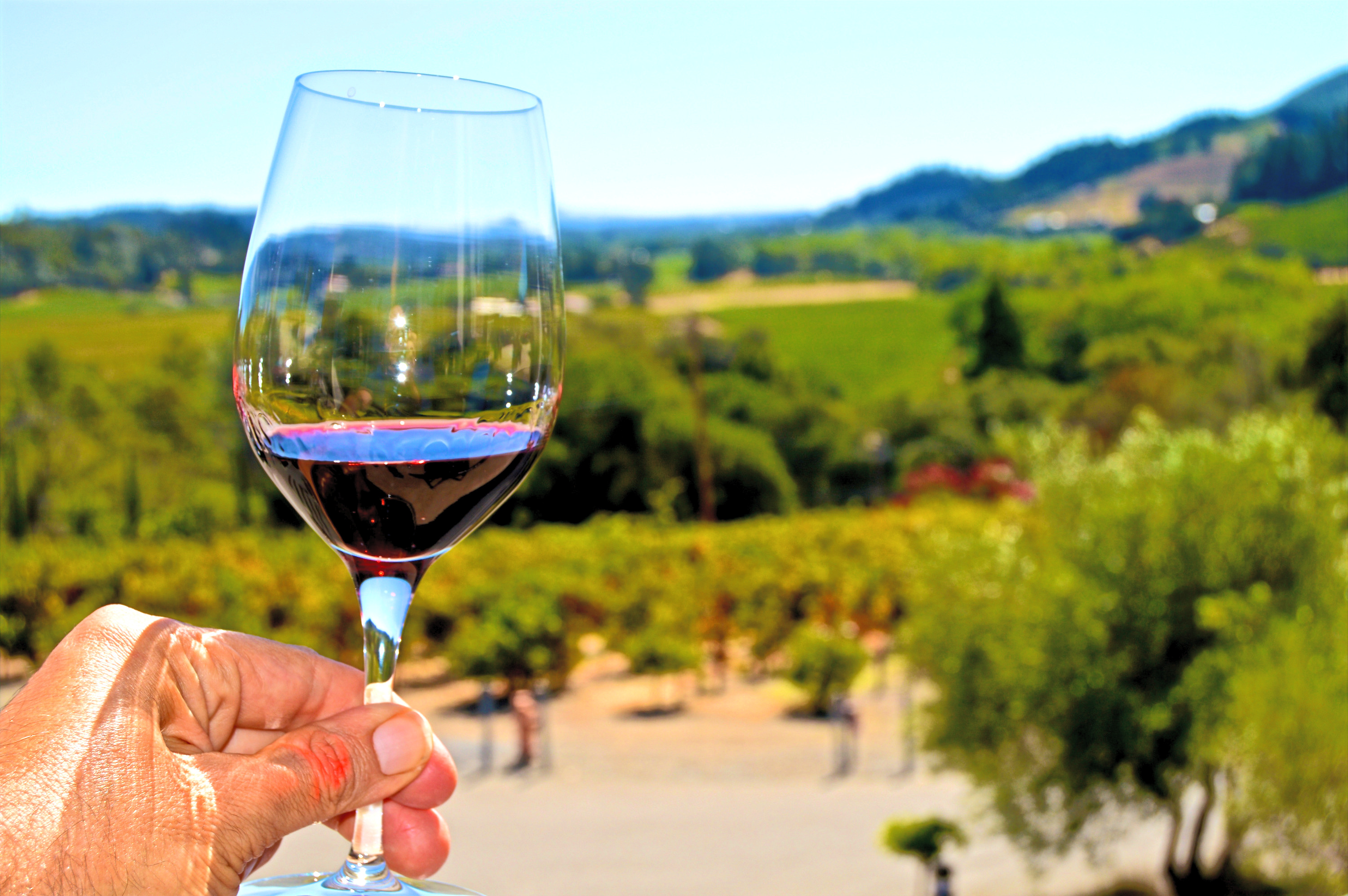 Wine Adventures | Custom Wine Tours
