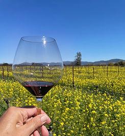 Wine%20Glass-Vyd-Carneros-Spring_edited.