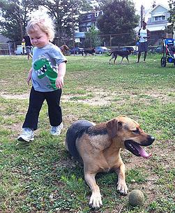 Children in the dog park