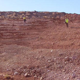 Sowing seeds on a mine site