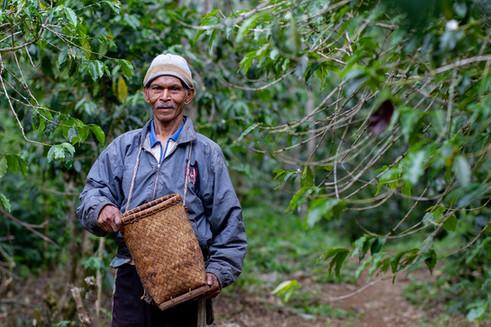 Coffee Farmer at Manggarai, Flores, East Nusa Tenggara. Travel Photography by Yunaidi Joepoet
