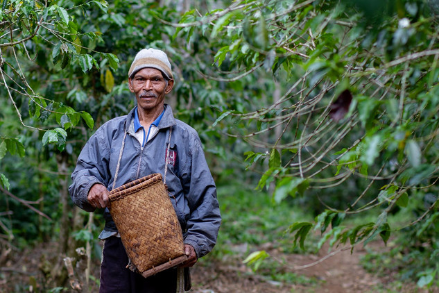Coffee Farmer at Manggarai, Flores, East Nusa Tenggara. Travel Photography by Yunaidi Joepoet