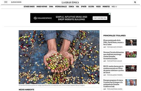 Coffee Farm Photographer, Editorial Phot