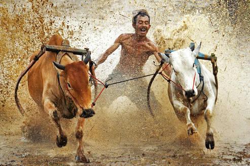 Indonesia Travel Photographer, Travel Ph