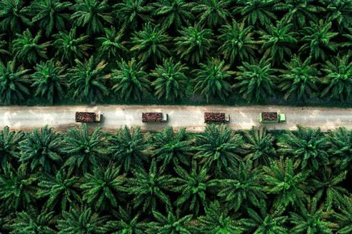 Aerial Photographer Indonesia, Aerial Ph