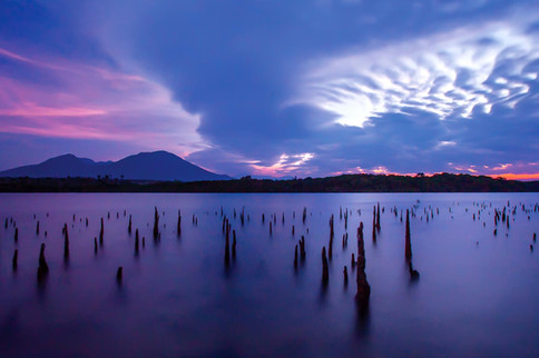 Baluran National Park, East Java. Nature and Landscape Photography by Yunaidi Joepoet