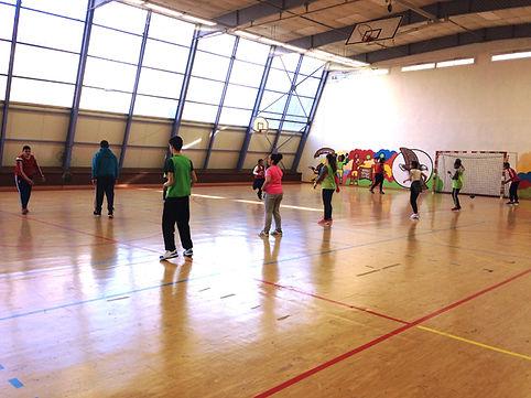 Stae citoyen Marseille Nord Handball