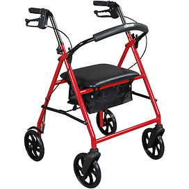 """Drive Medical Rollator with 6"""" wheelcs"""