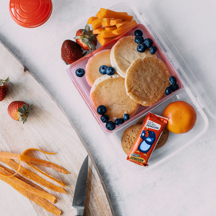 Penguin Lunchbox