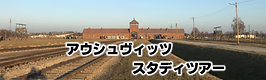 button_auschwitz study tour.png