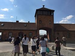 Auschwitz, 2015