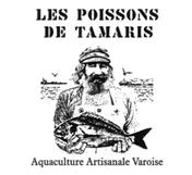 Les poissons de Tamaris