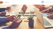 IT systems and software consulting - France