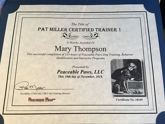 Dog Trainer Certification
