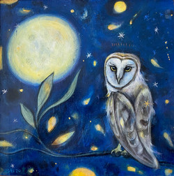 Owl and the Fireflies