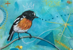Robin on Turquoise1