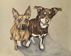 Juno and Wally Drawing