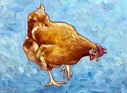 Little Hen 1