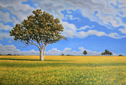 Lonely Tree in a Canola Field