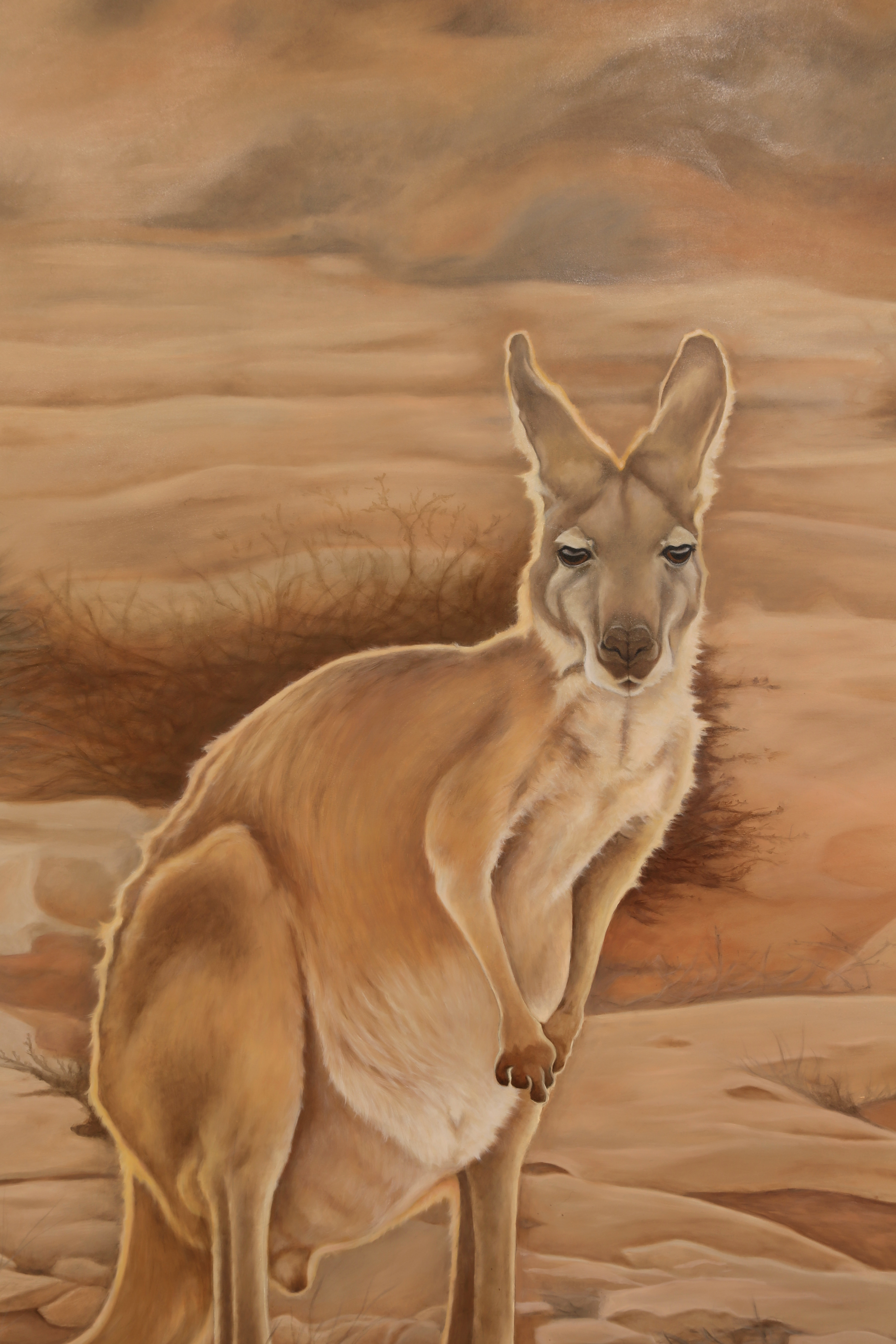 The Ningaloo Wanderer - Detail