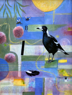 A Magpie's View of the Universe