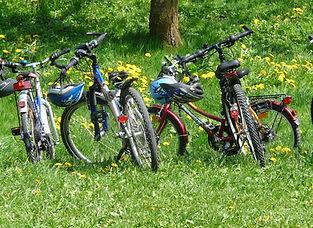 bicycles-6895_960_720.jpg