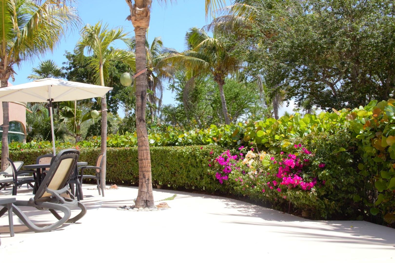 Seating and shade around pool.