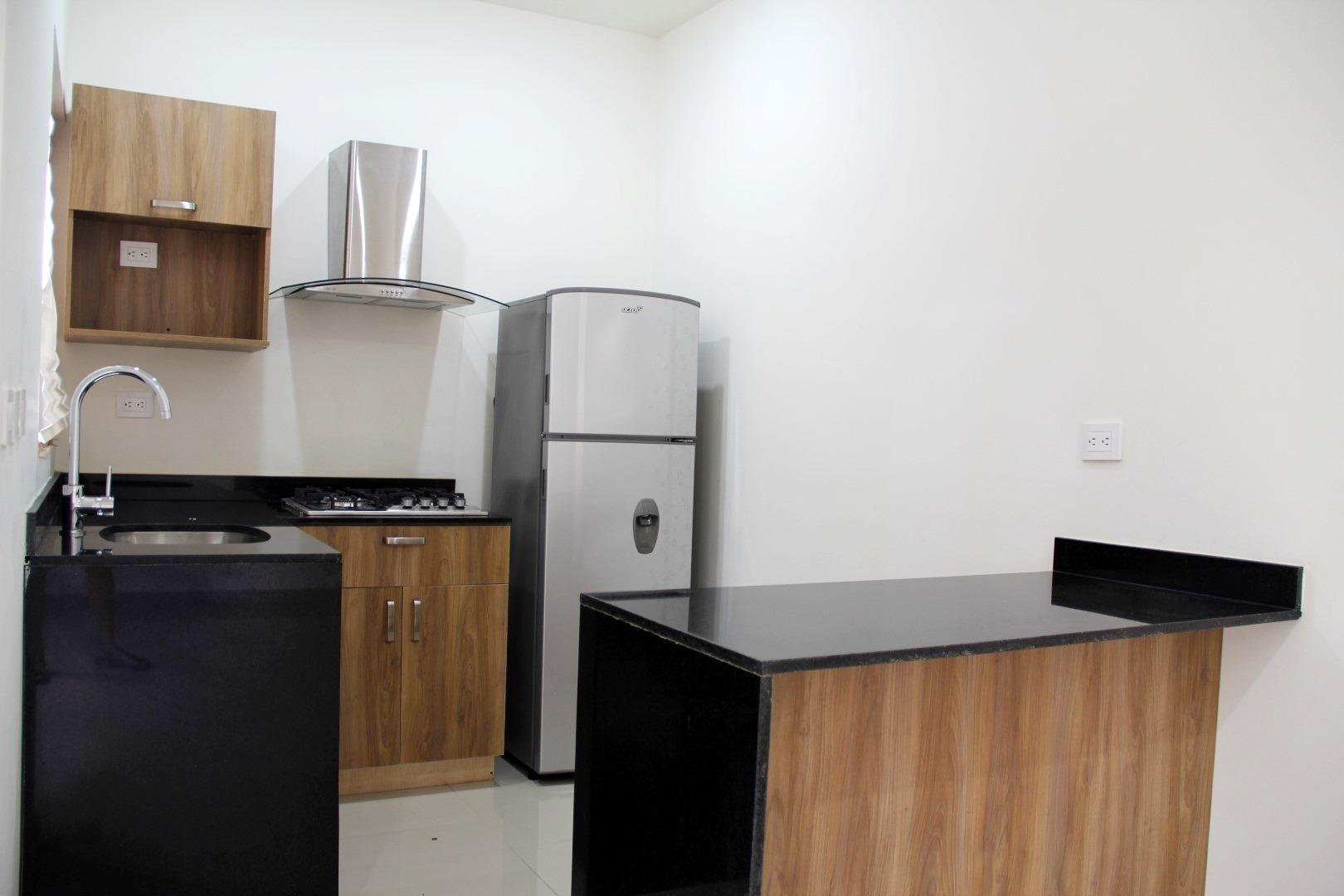 Kitchen with fridge, stove and range hood.
