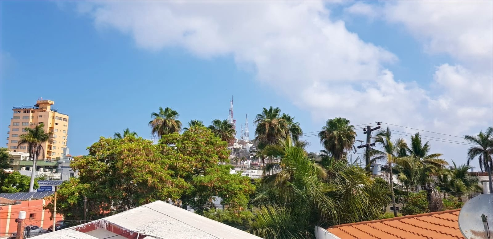 Roof-top views.